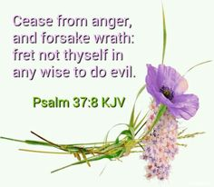 b0d9e09fb1c3b119d31e3288c71f8a21--psalm--kjv-psalms