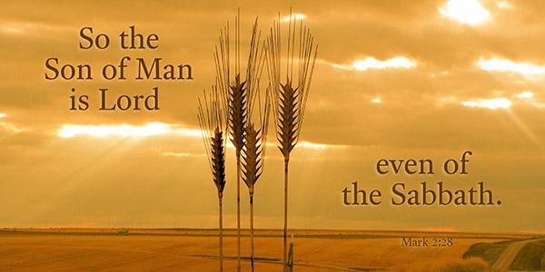 Lord_of_sabbath