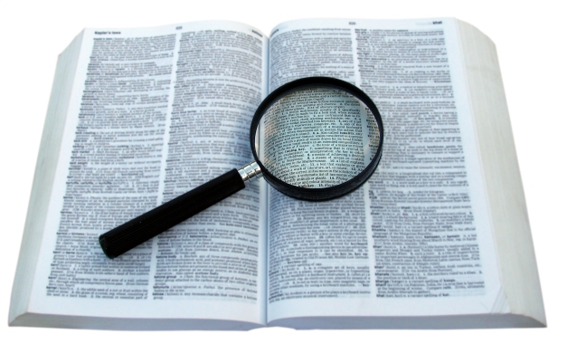 magnifying the law