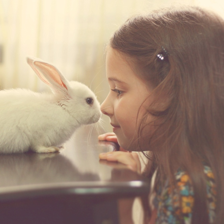 tenderness_by_mechtaniya-d3isoga